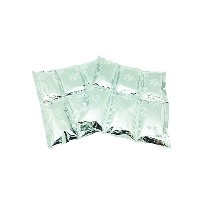 Family Ice Pack 2 Pack Polar Gear